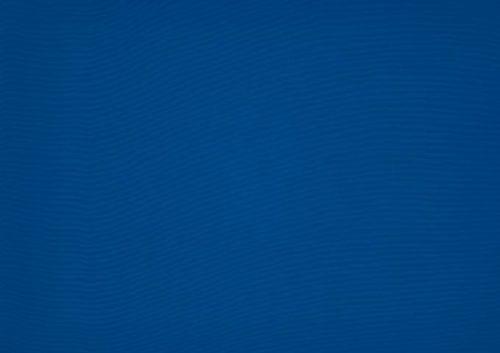 Orchestra-0017-Bleu