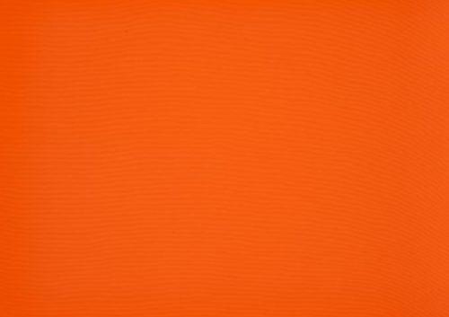 Orchestra-0018-Orange